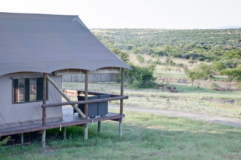 Game drives, bird watching, and relation. All in style - image source: thespringboklodge.co.za